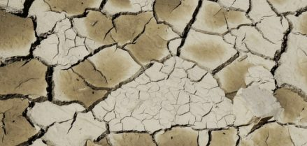 Dry Skin Dermatology Charleston
